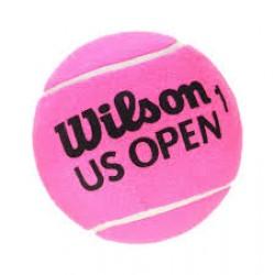 WILSON MINI JUMBO BALL 5''