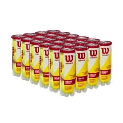 WILSON CHAMPIONSHIP TENISA BUMBIŅAS - kaste ar 24 tubiem (72 bumbas)